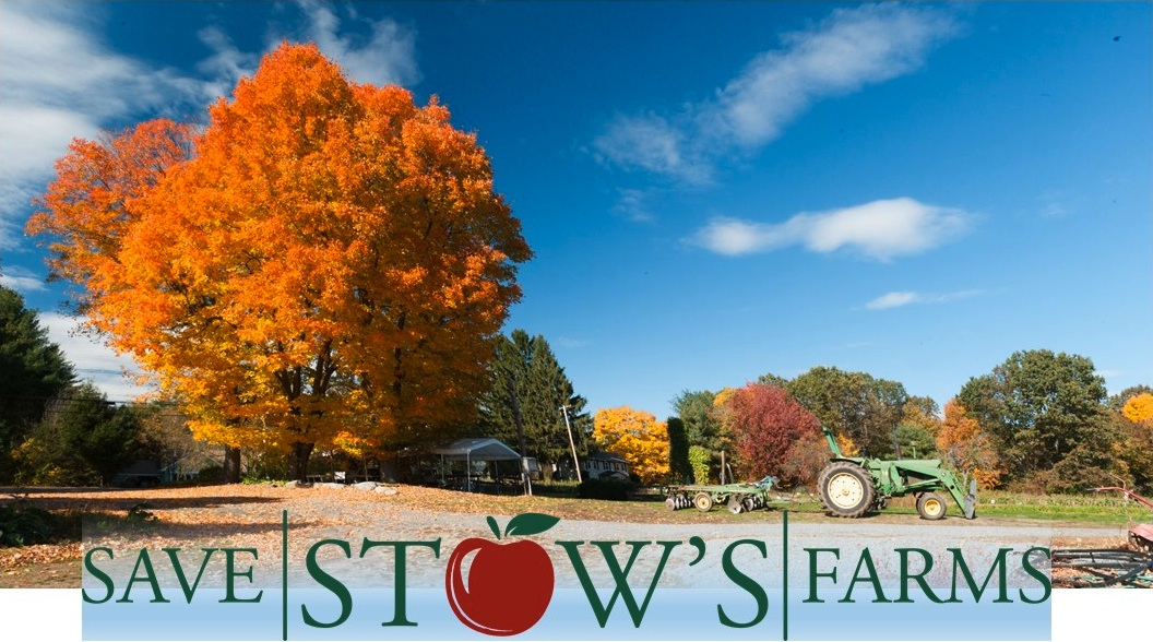 orange tree, tractors, Save Stow Farms